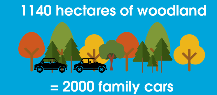 graphic of trees and a car saying 1140 hectares of woodland = 2000 family cars