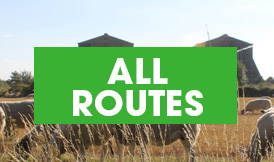 All routes button