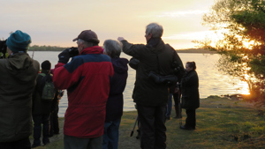 Bird watchers look out onto the lake at sunrise