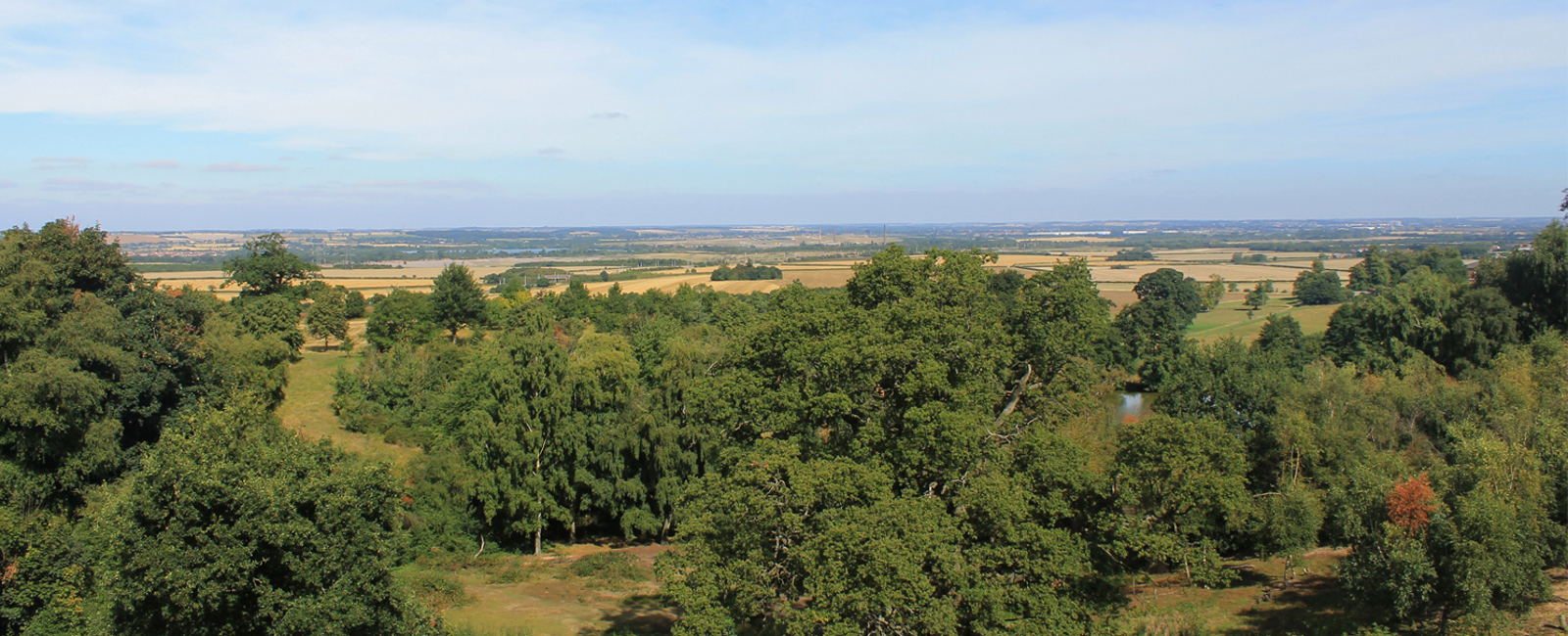 View from Ampthill Great Park