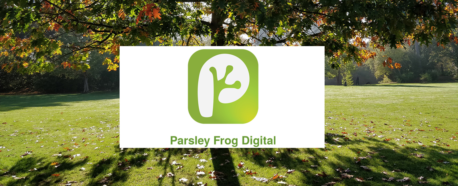 A tree in a field with the Parsley Frog logo in front