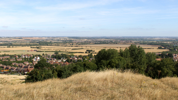 View from Folly Wood