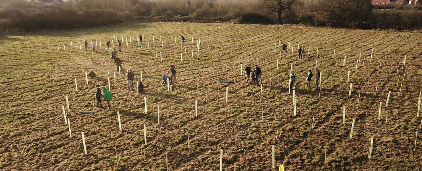 Young Farmers plant 420 trees