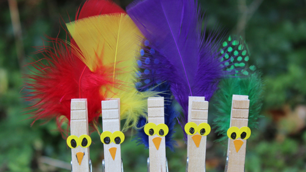 Pegs with colourful feathers, made into birds for kids crafts
