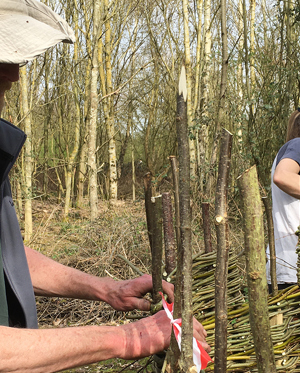 Site news - new willow huts installed