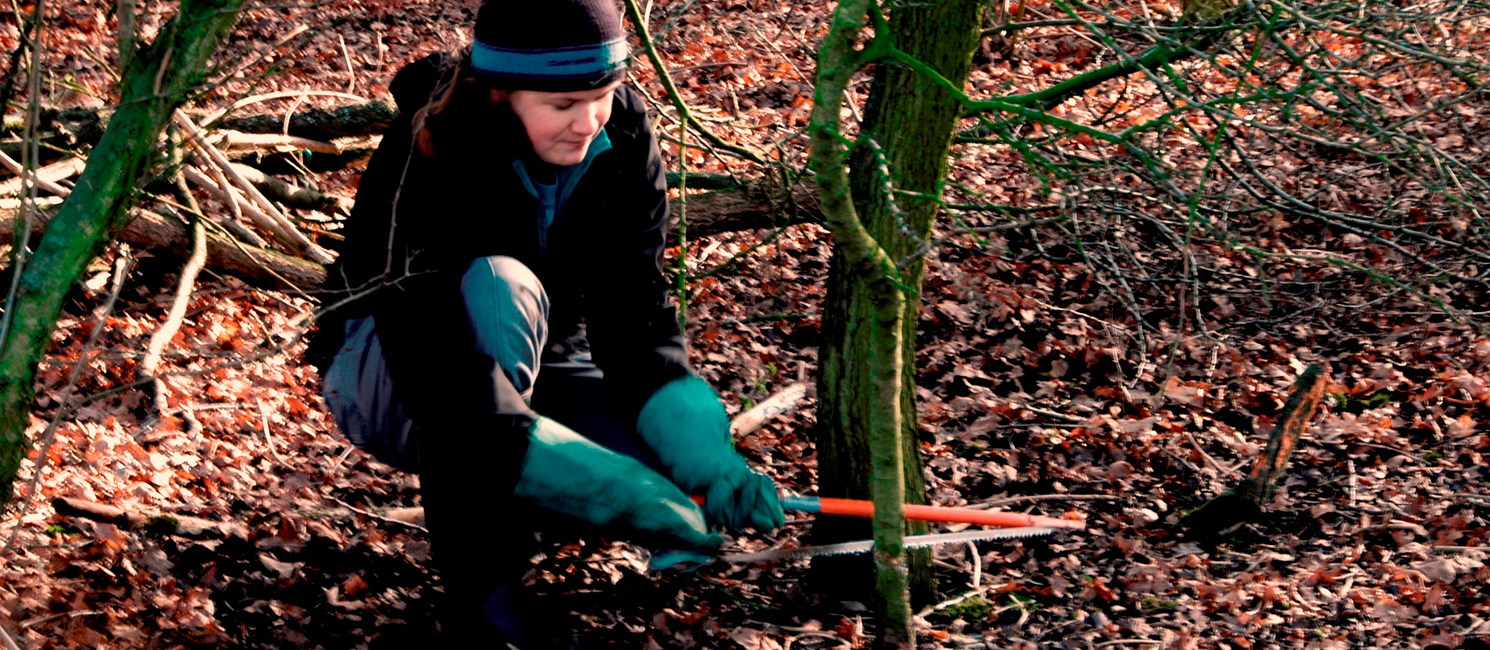 A lady does coppicing