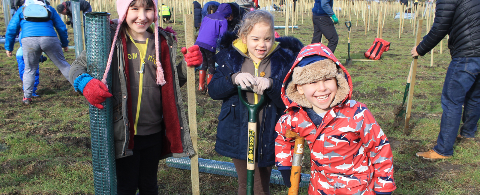 You planted over 2500 trees at Waypost Wood!