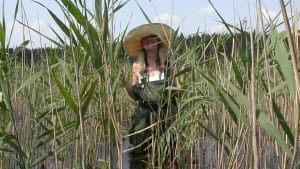 Artist Kerry in the reedbeds