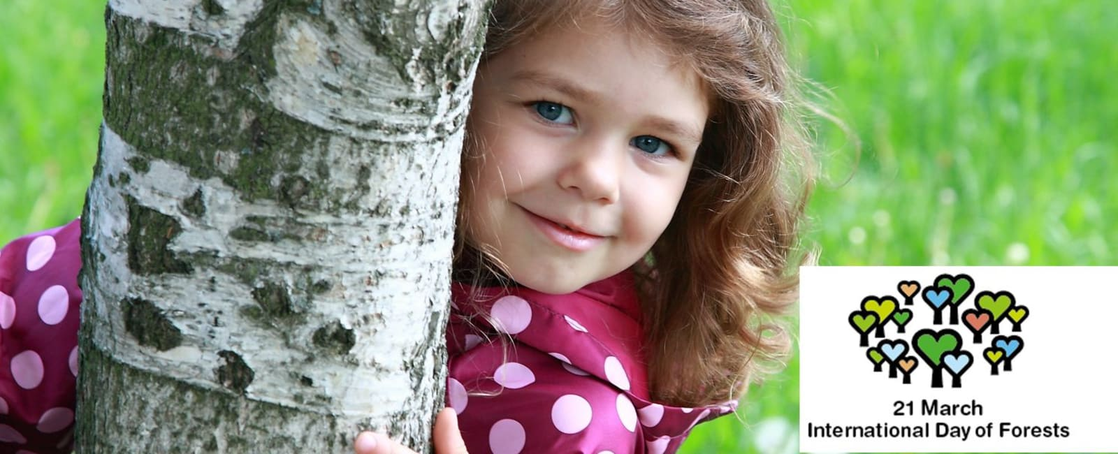 Child peeking round a tree and Int. Day of Forests logo