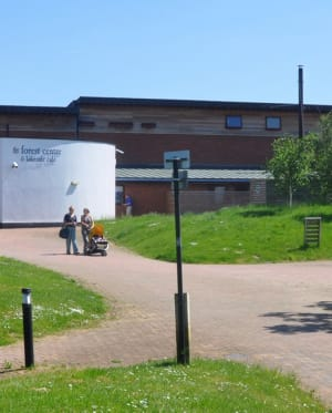 Forest Centre in summer